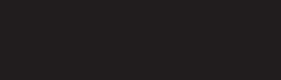 RIVA_Sicherheitstechnik_logo